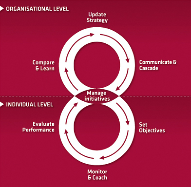 Organisational level